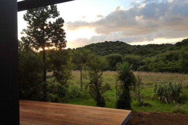 Kauri-tree-retreat7