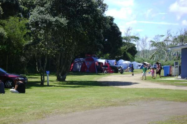 kopua-camp-ground-01